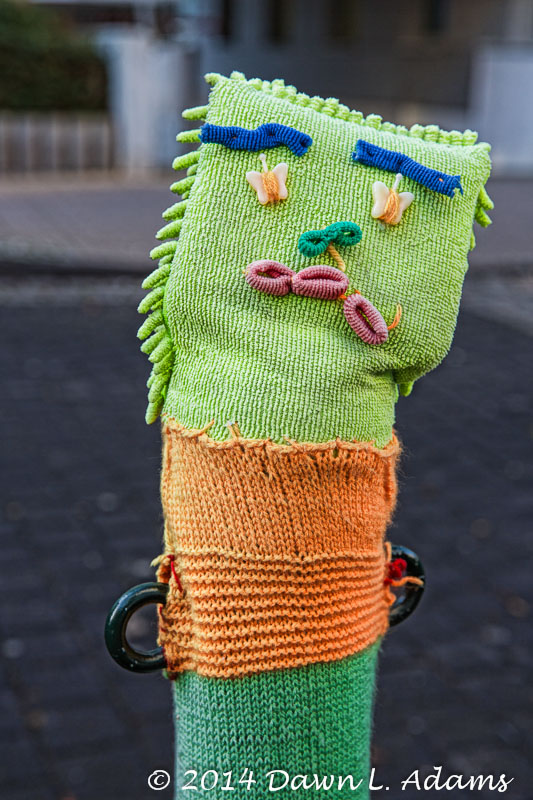 Knit Bombing-10.JPG