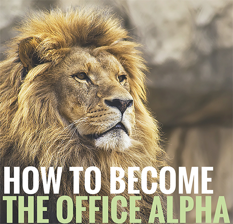Series:  How to Become The Office Alpha Male