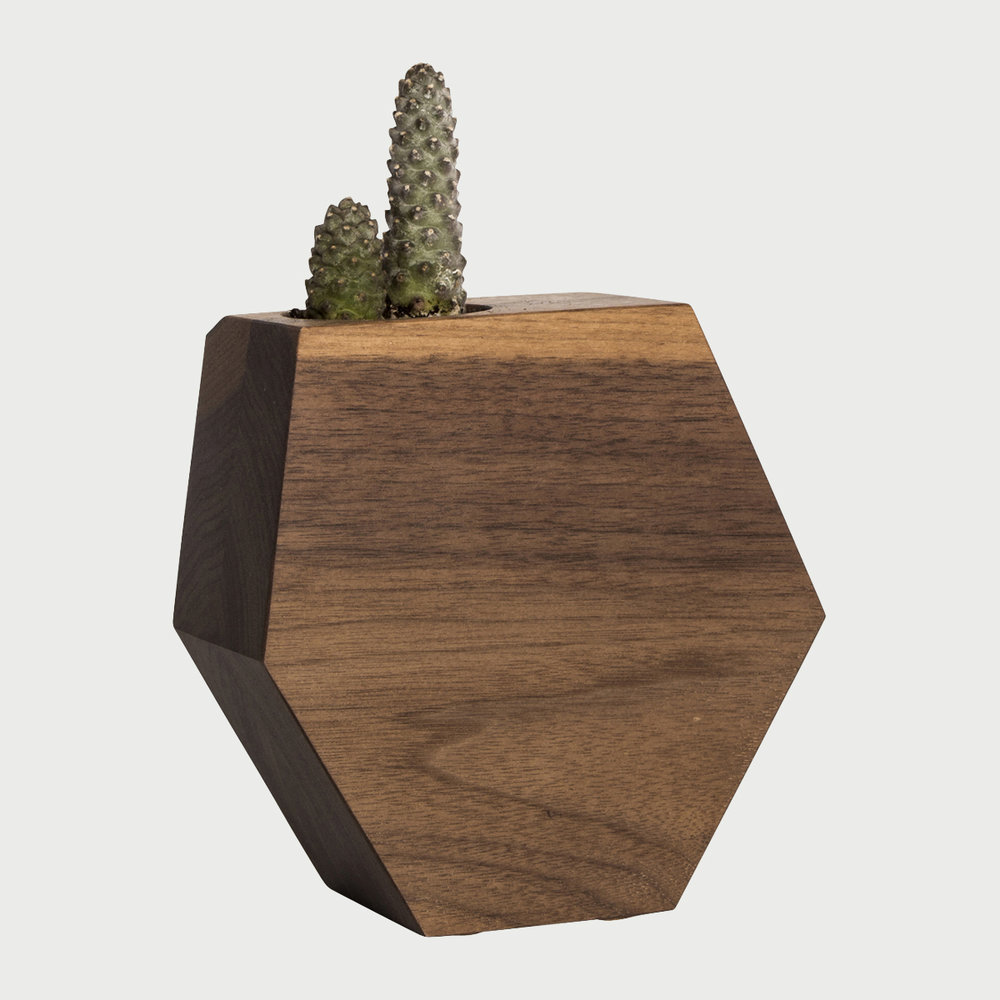 Hexagon_Walnut.jpg