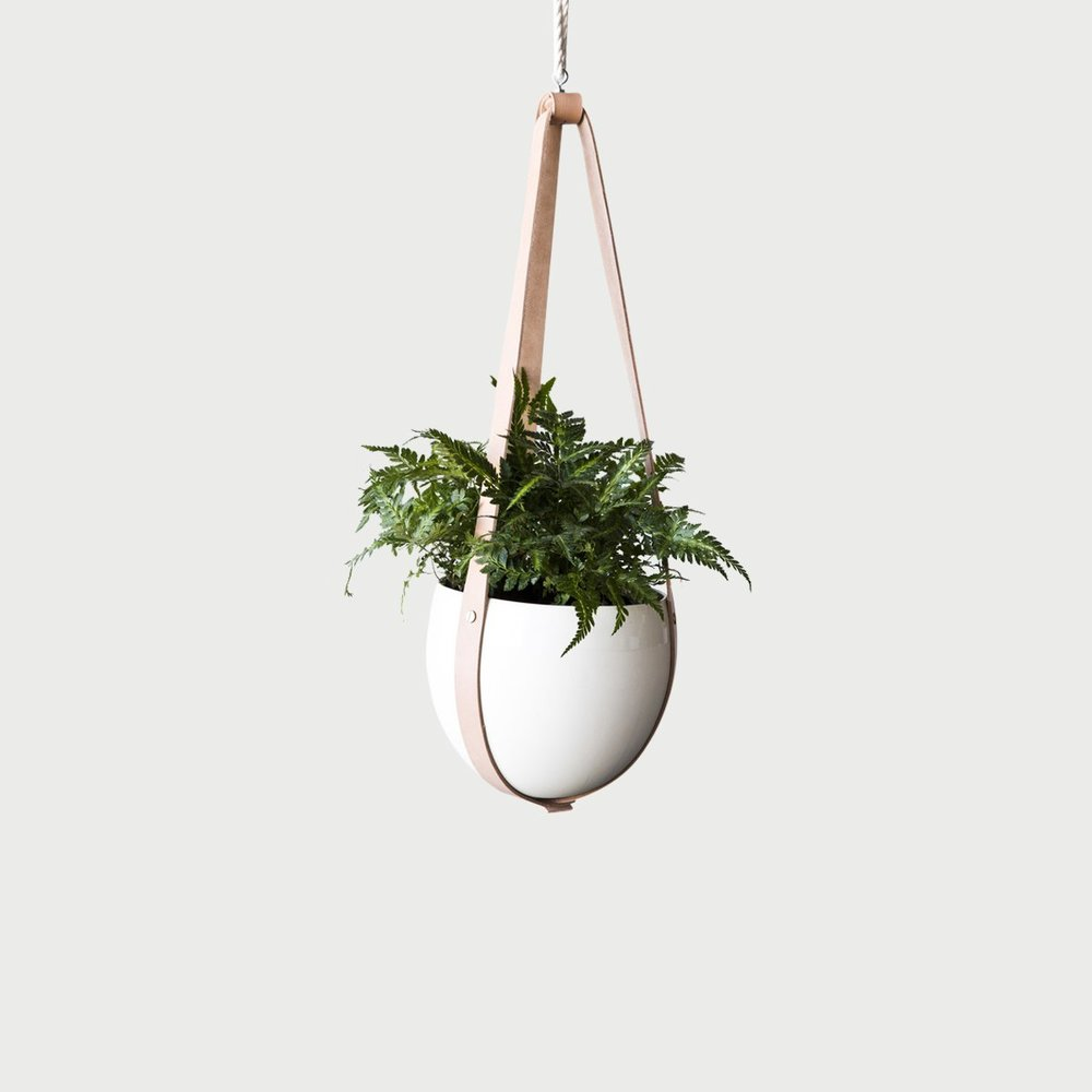 farrah_sit_leather-ceiling-planter_1024.jpg