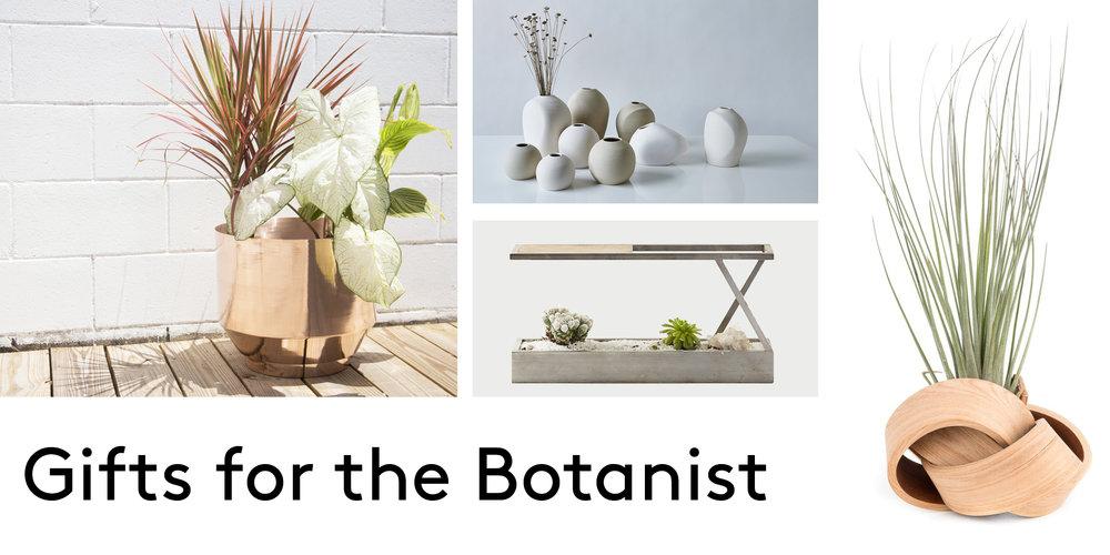 header Botanist.jpg