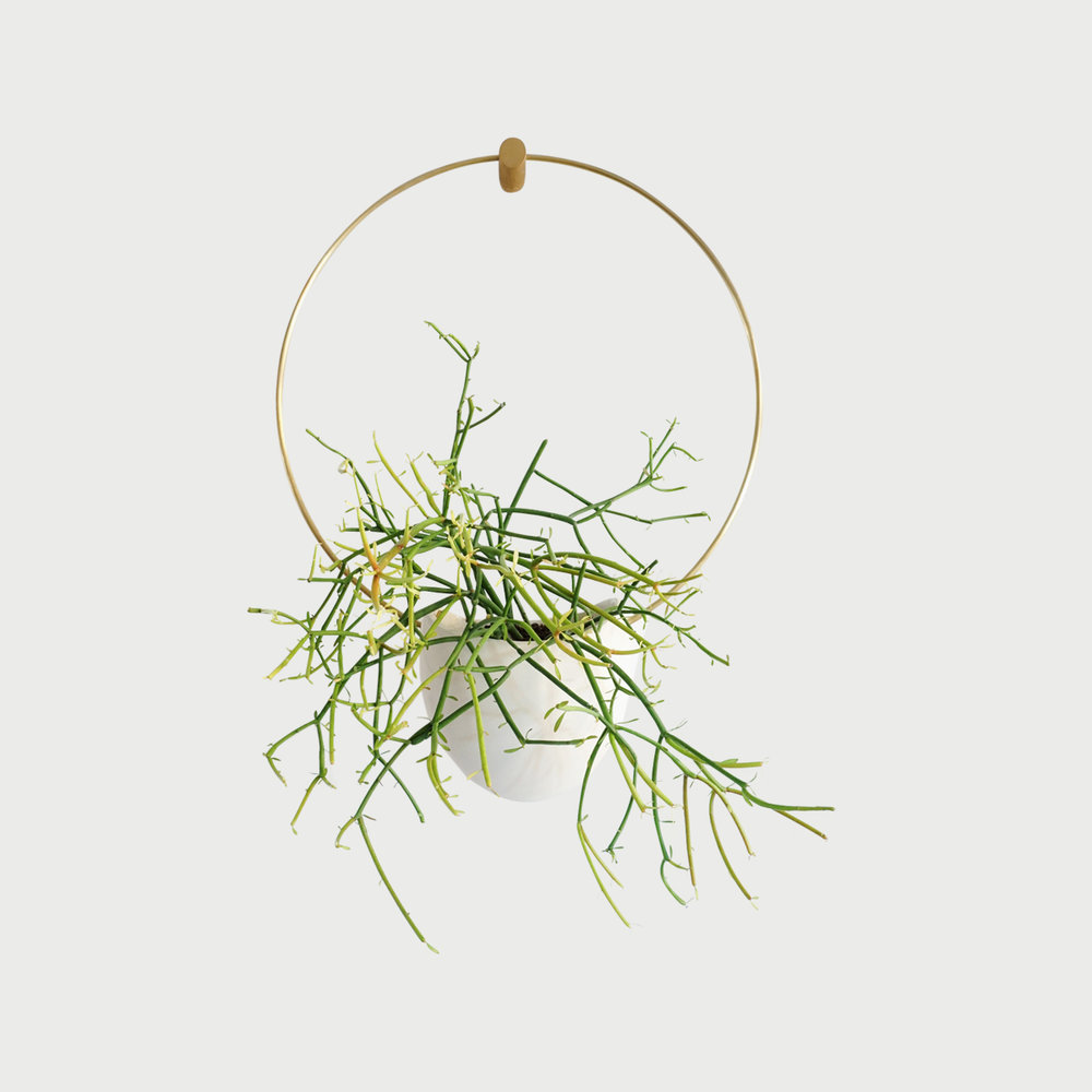 Copy of Ceramic & Brass Hanging Planter (Flatback Spora Circle)