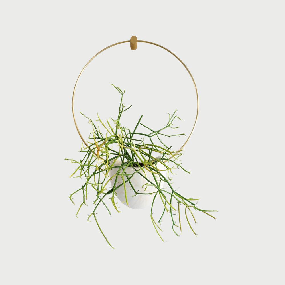 Ceramic & Brass Hanging Planter (Flatback Spora Circle)