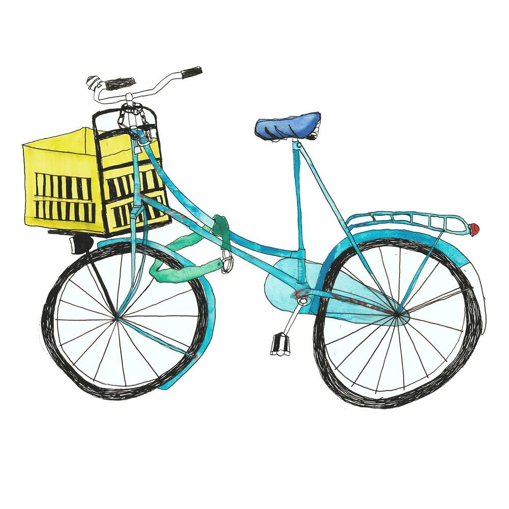 anisa_PP_COL_bikex.jpg
