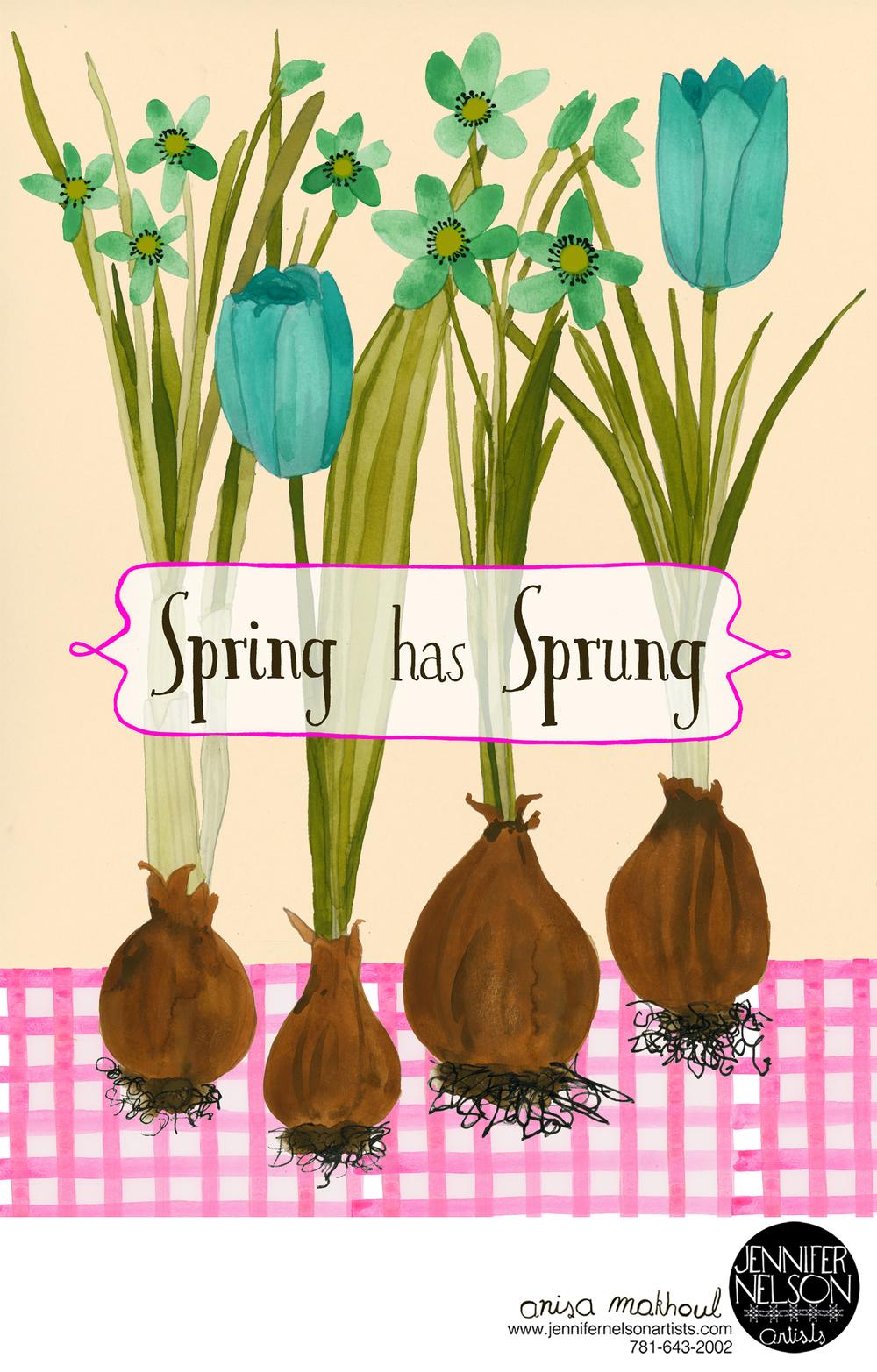 anisa_spring