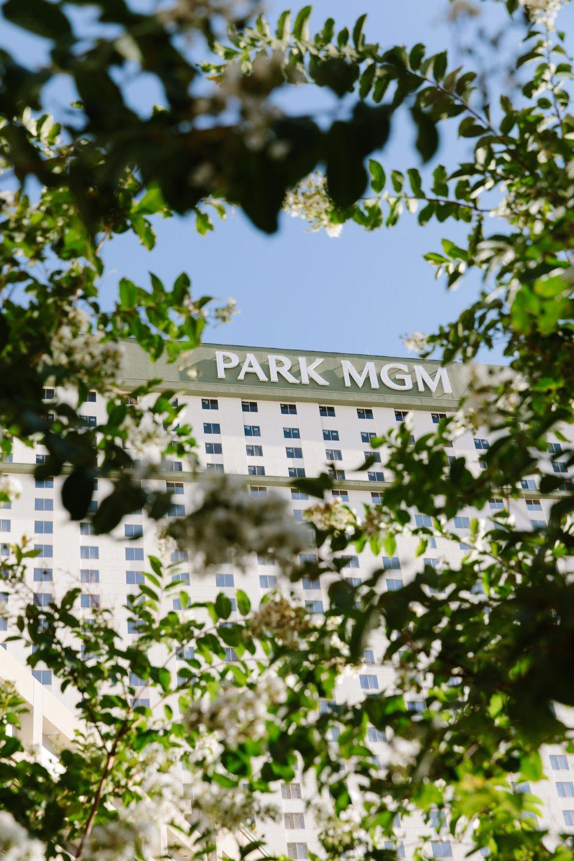 PatrickMichaelChin_ParkMGM_LasVegas-42.jpg