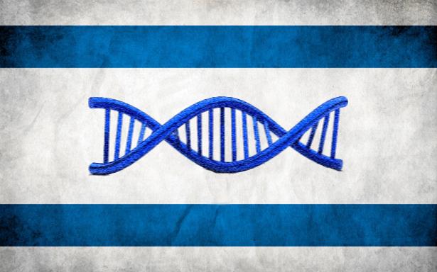 The Primacy Of Jewish Genes Wheelwright+flaggenome+p