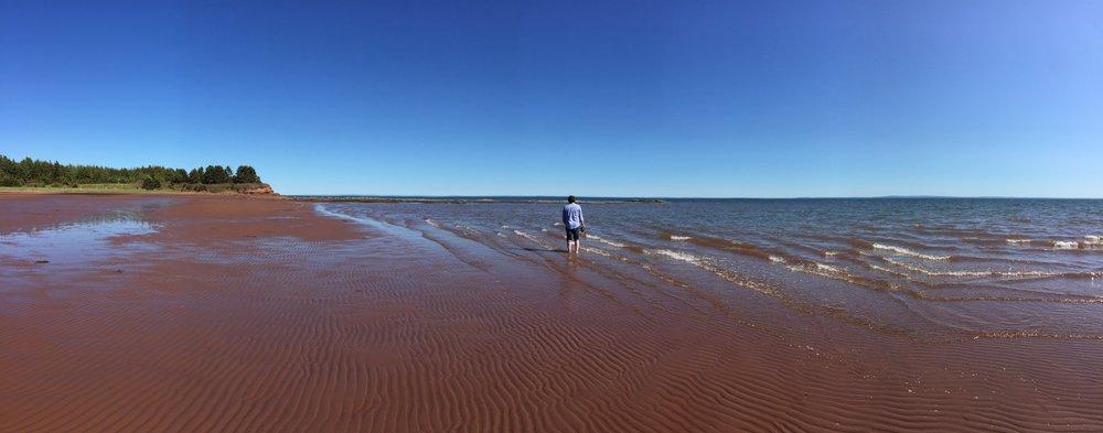 Panting Shore, at low tide.