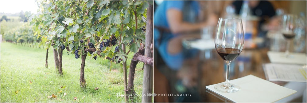The grapevines at Winery Poliziana went as far as the eye could see!