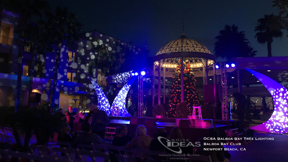 Balboa Bay Tree Lighting_1.jpg