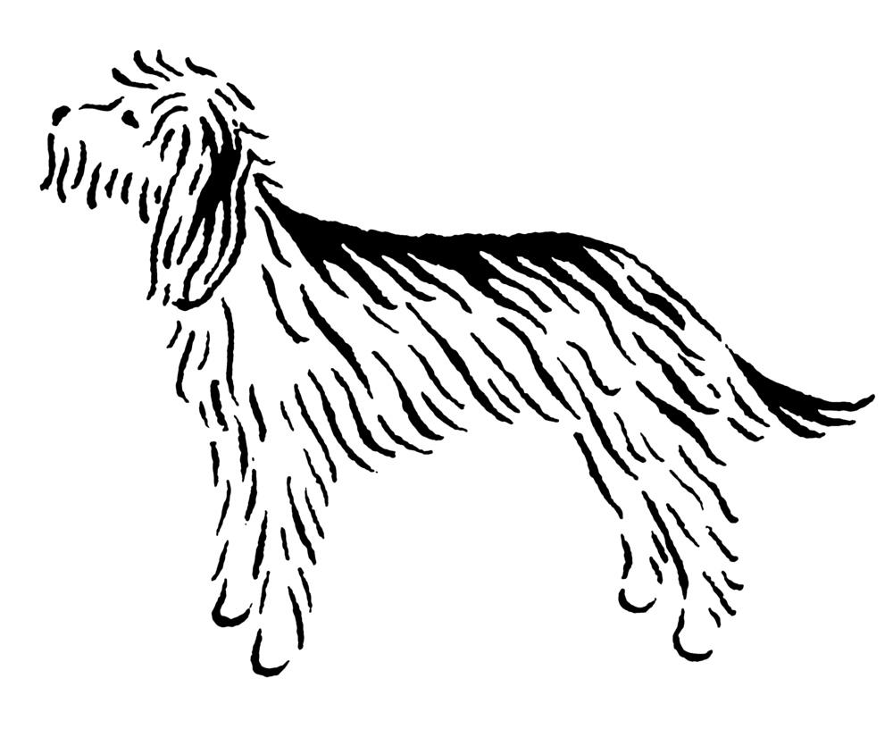 otterhound_e.jpg