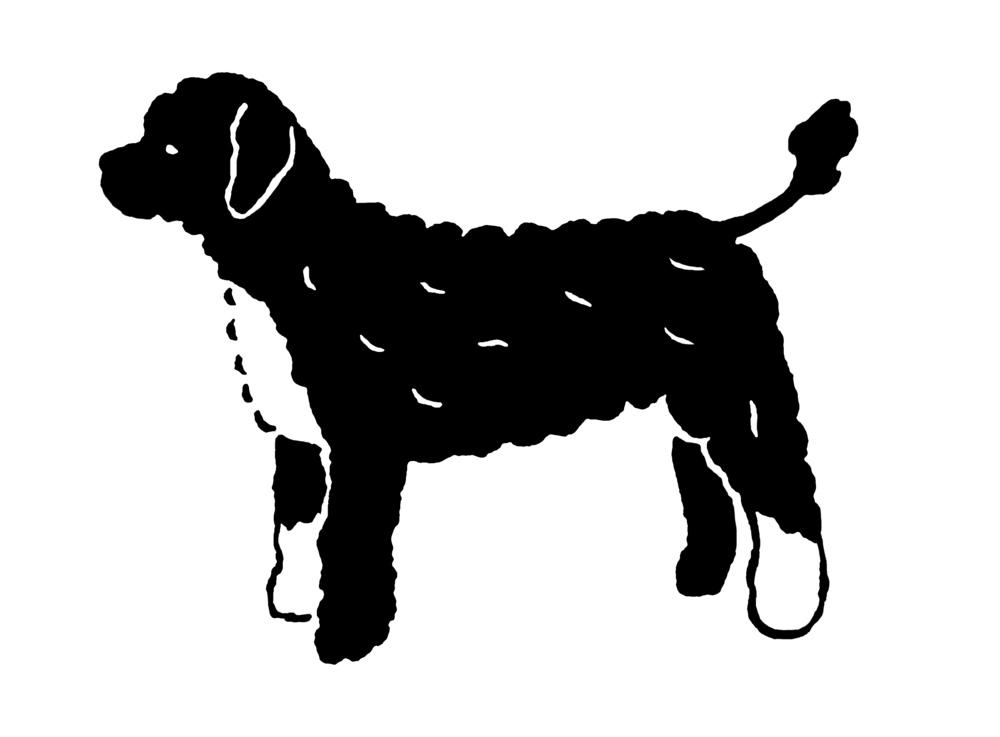 portuguesewaterdog_e.jpg
