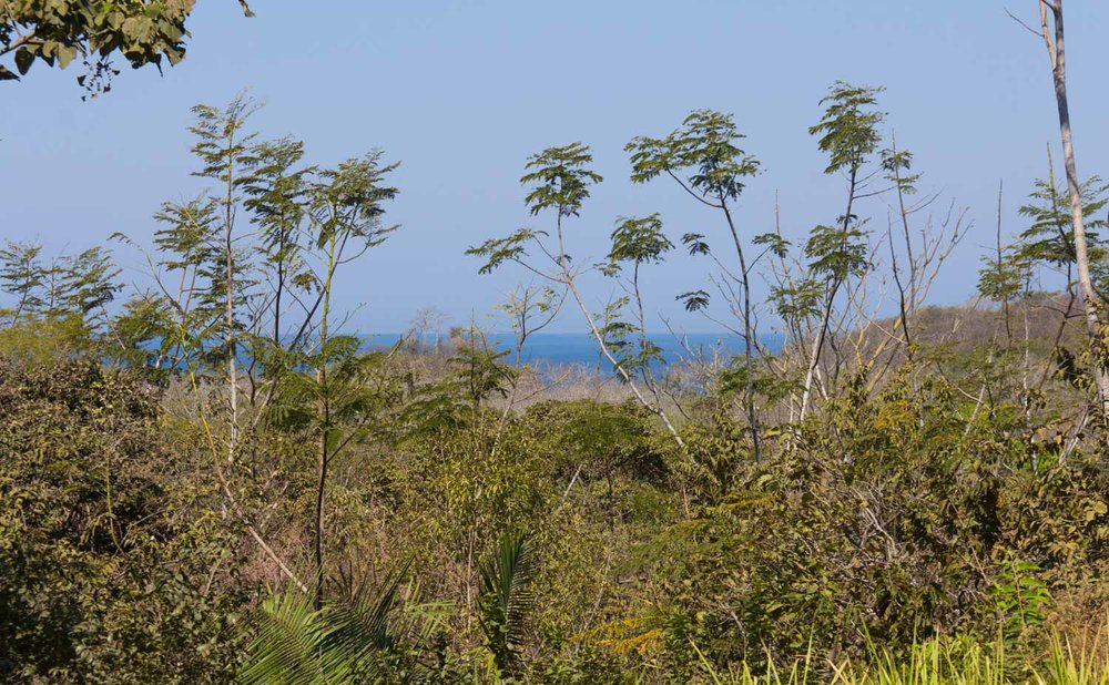 1.08 acres | 4386 sqm | Ocean view