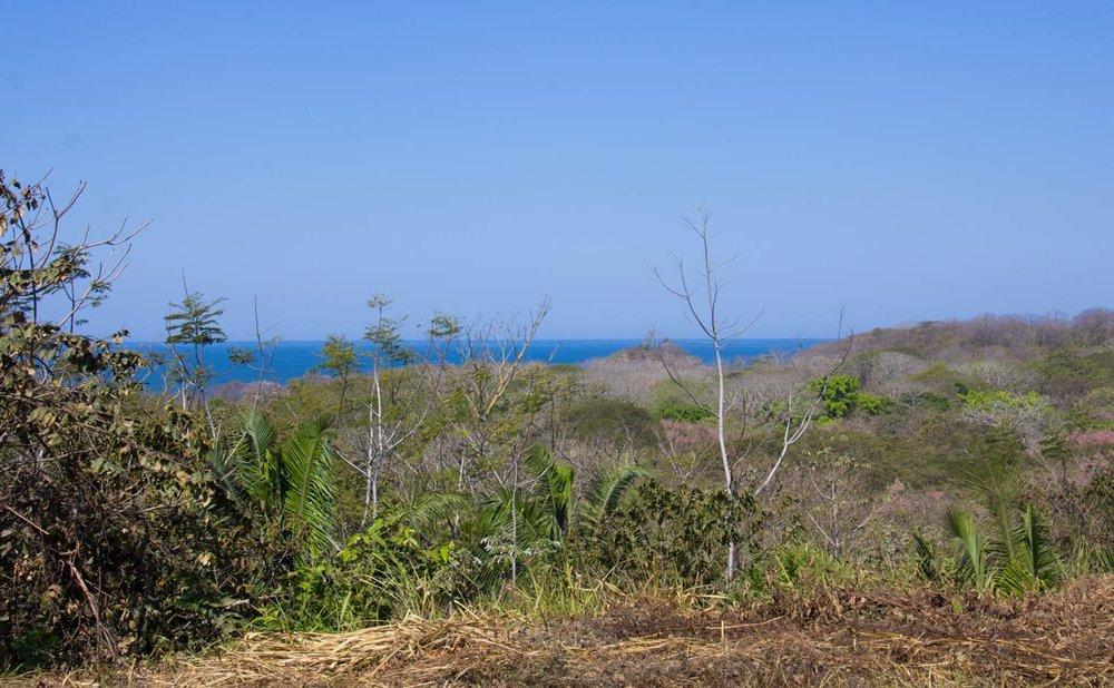 0.28 acres | 1159 sq m | Ocean view