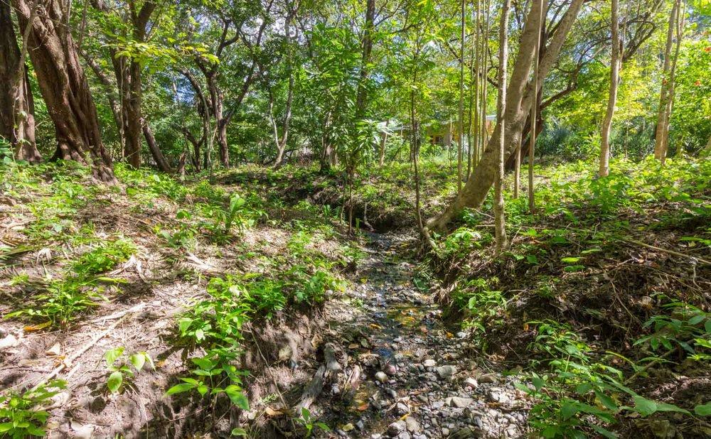 0.35 acres | 1401 sqm | Walk to the beach