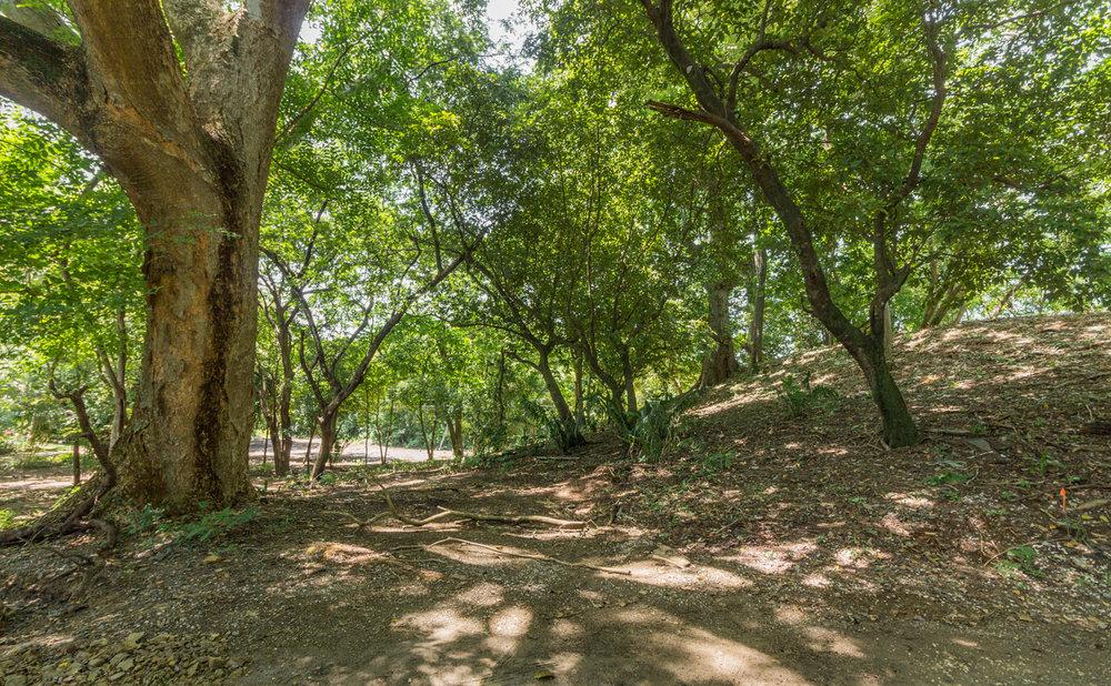 0.24 acres |1008 sq m. | Walk to the beach