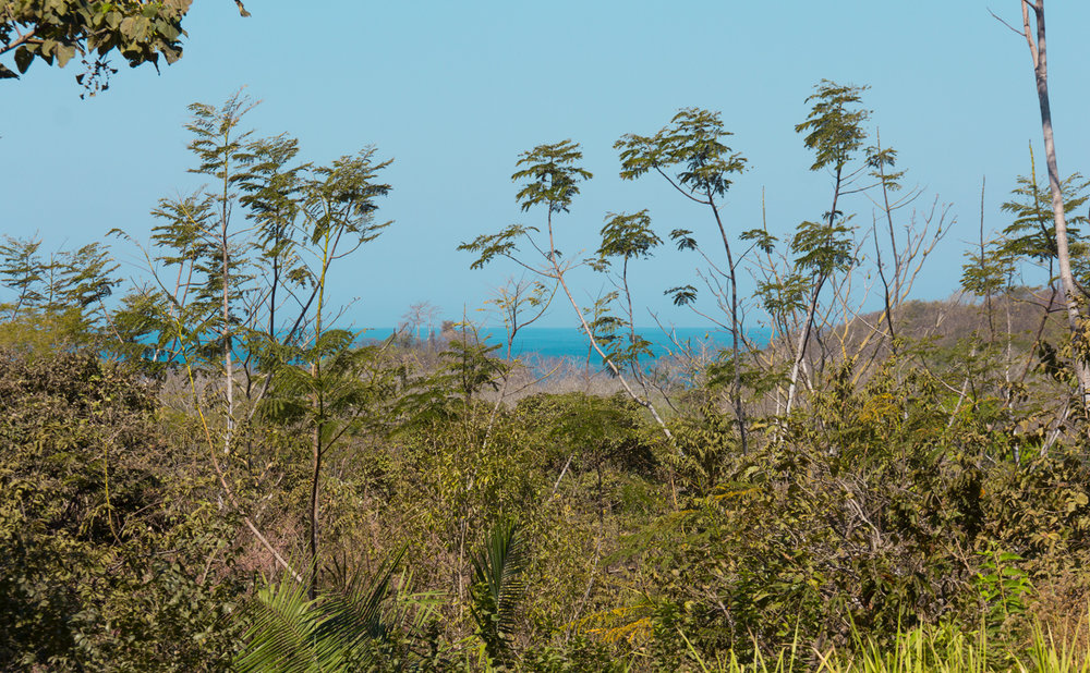 1.08 acres |4386 sqm |Ocean view