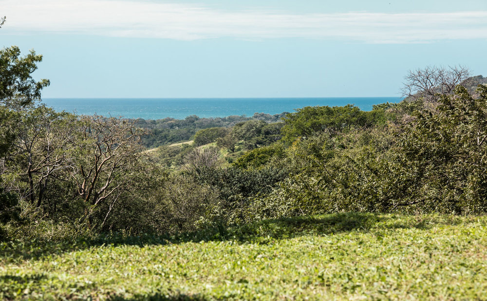 56.8 acres | 23 hectares | Ocean View
