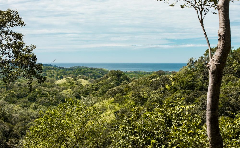 56.8 acres | 23 hectares | Ocean Views