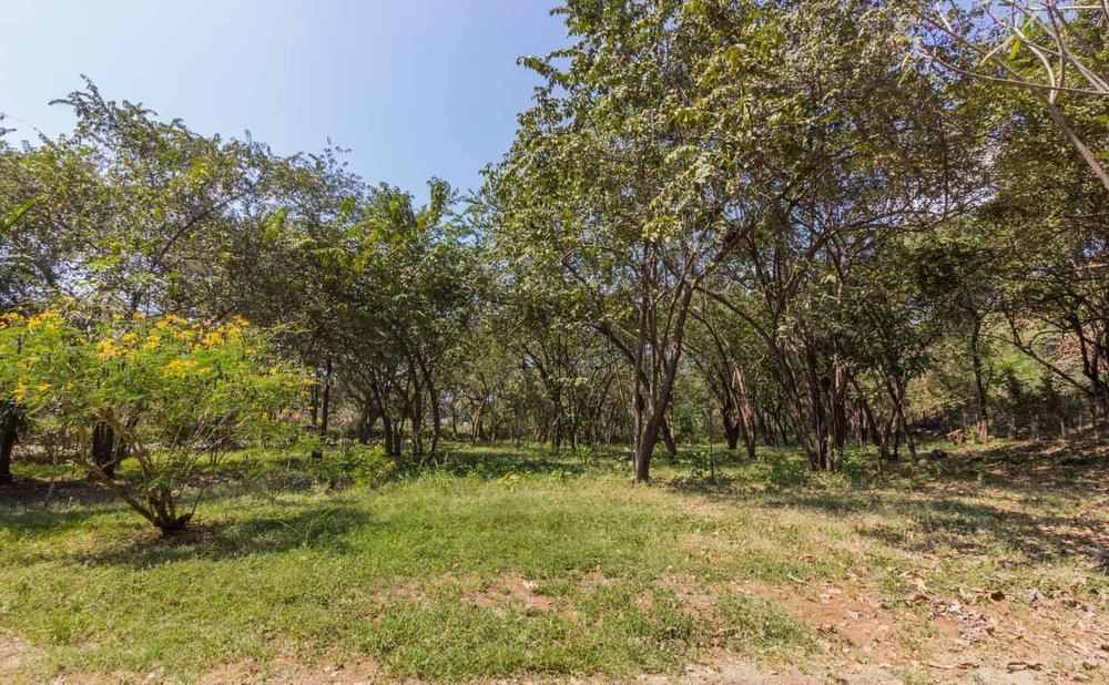 0.46 acres | 1842 sqm | Flat topography