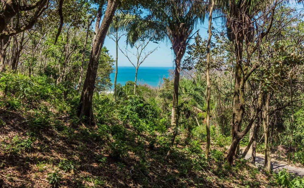 0.28 acres | 1,150 m²| Ocean View | Double Road Frontage