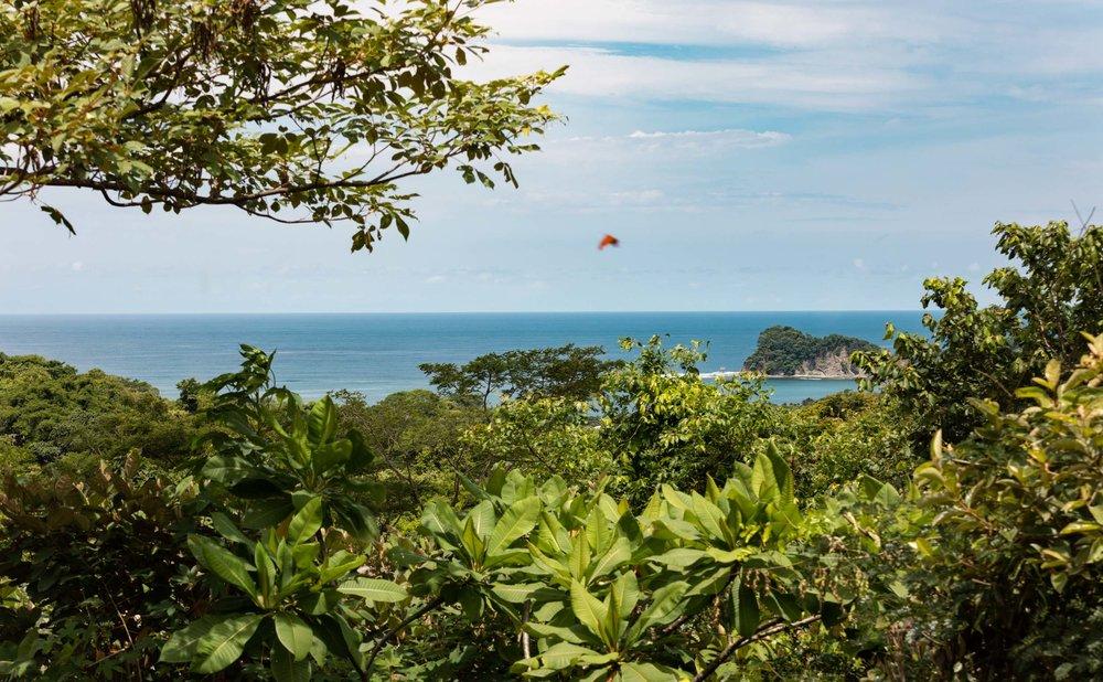 0.6 acres | 2,525 sq m | Ocean View