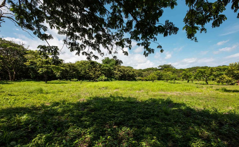 1.23 acres | 5000 m2 | Private Location and Buildble Topography