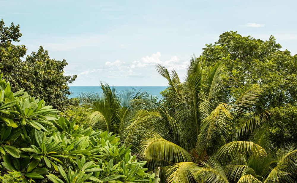 Casa-Harmony-Wanderlust-Realty-Real-Estate-Rentals-Nosara-Costa-Rica-5.jpg