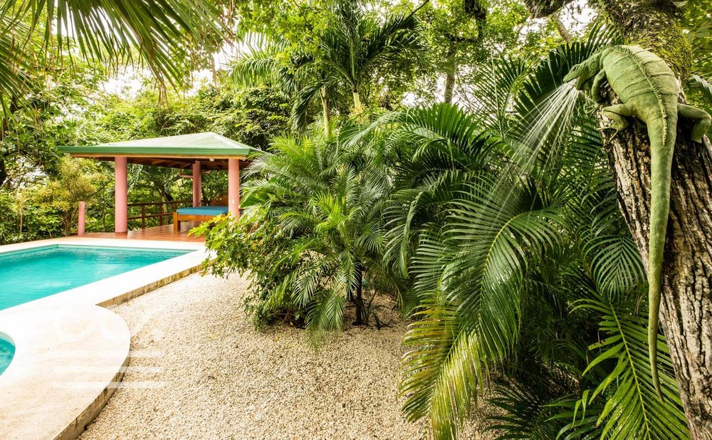 Casa-Nadine-Wanderlust-Realty-Real-Estate-Retals-Nosara-Costa-Rica-4.jpg