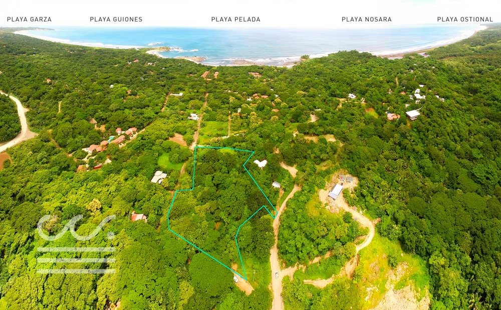 C-199-Drone-Outline-Text-Wanderlust-Realty-Real-Estate-Rentals-Nosara-Costa-Rica-1.jpg