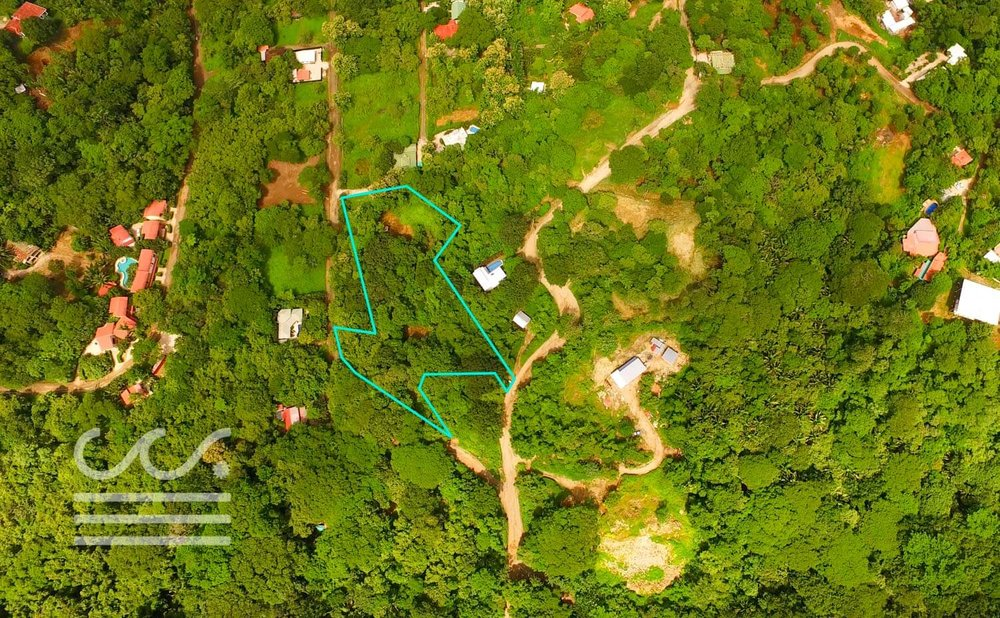 C-199-Drone-Outline-Wanderlust-Realty-Real-Estate-Rentals-Nosara-Costa-Rica-1.jpg