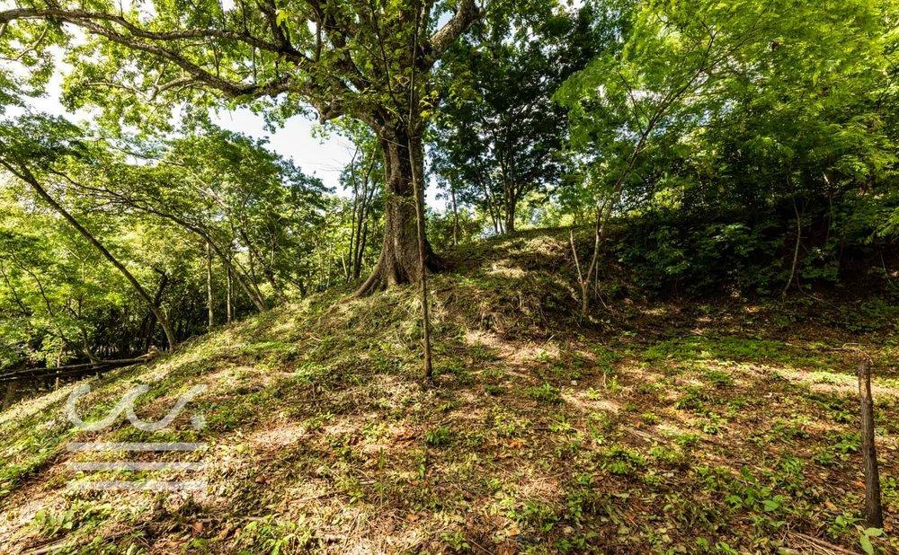 Wanderlust-Realty-Real-Estate-Retals-Nosara-Costa-Rica-3.jpg