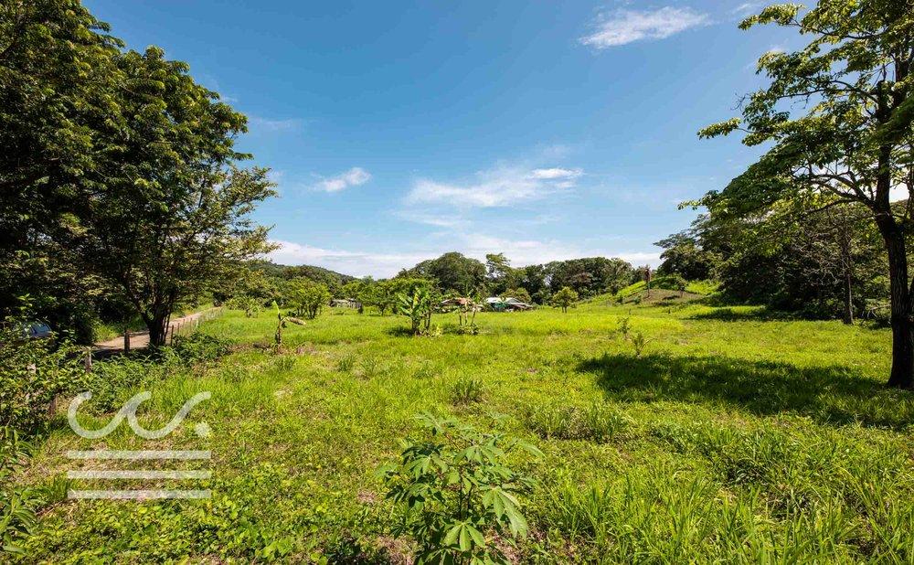 Esperanza-Jungle-Lot-Wanderlust-Realty-Real-Estate-Nosara-Costa-Rica-7.jpg
