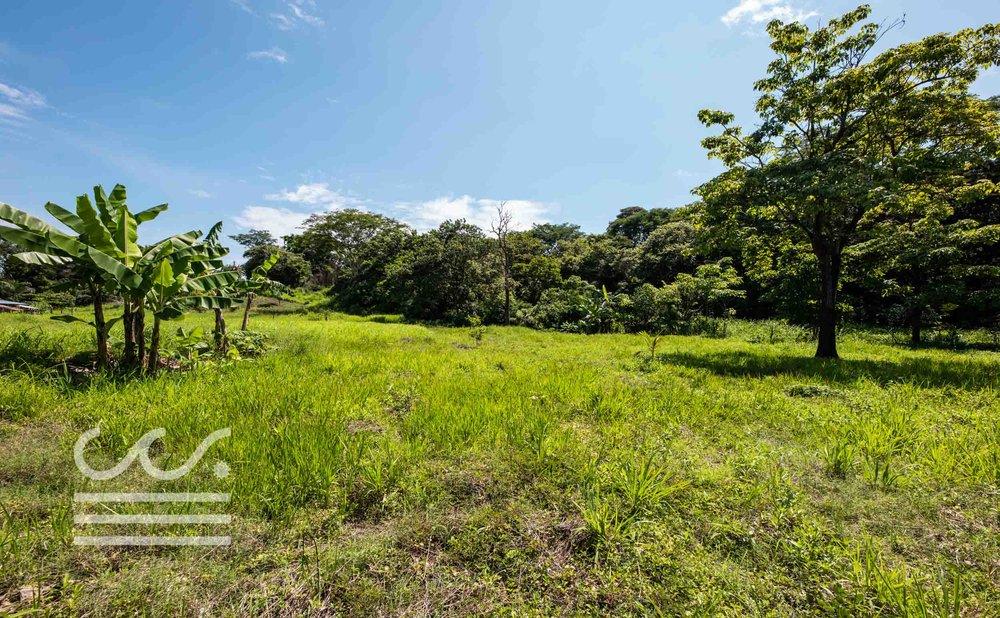 Esperanza-Jungle-Lot-Wanderlust-Realty-Real-Estate-Nosara-Costa-Rica-8.jpg