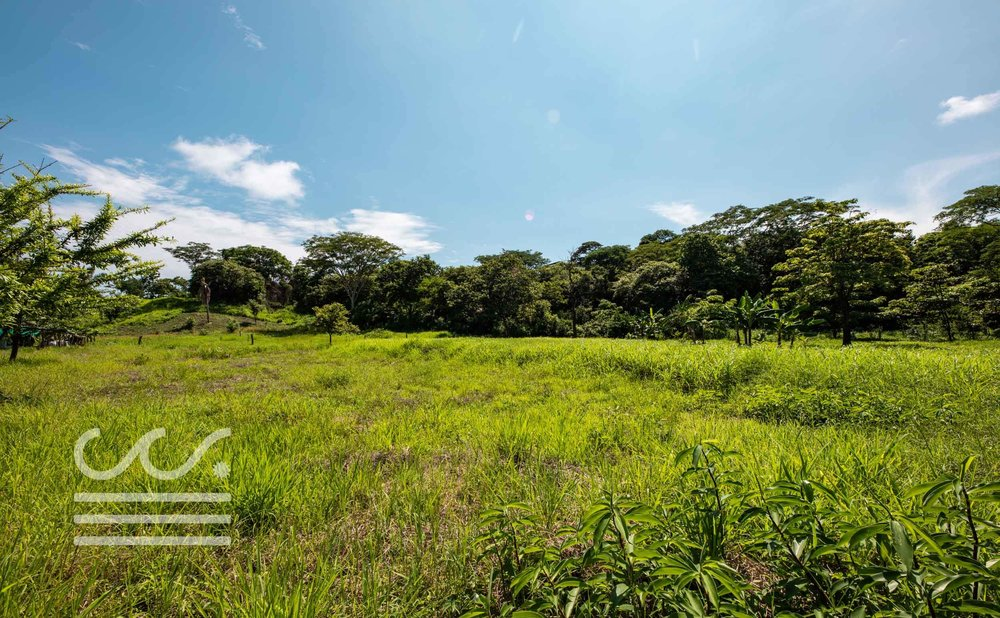 Esperanza-Jungle-Lot-Wanderlust-Realty-Real-Estate-Nosara-Costa-Rica-9.jpg