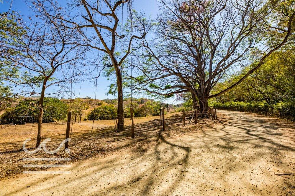Dos-Playas-Lots-WM-Wanderlust-Real-Estate-Nosara-4compressed.jpg