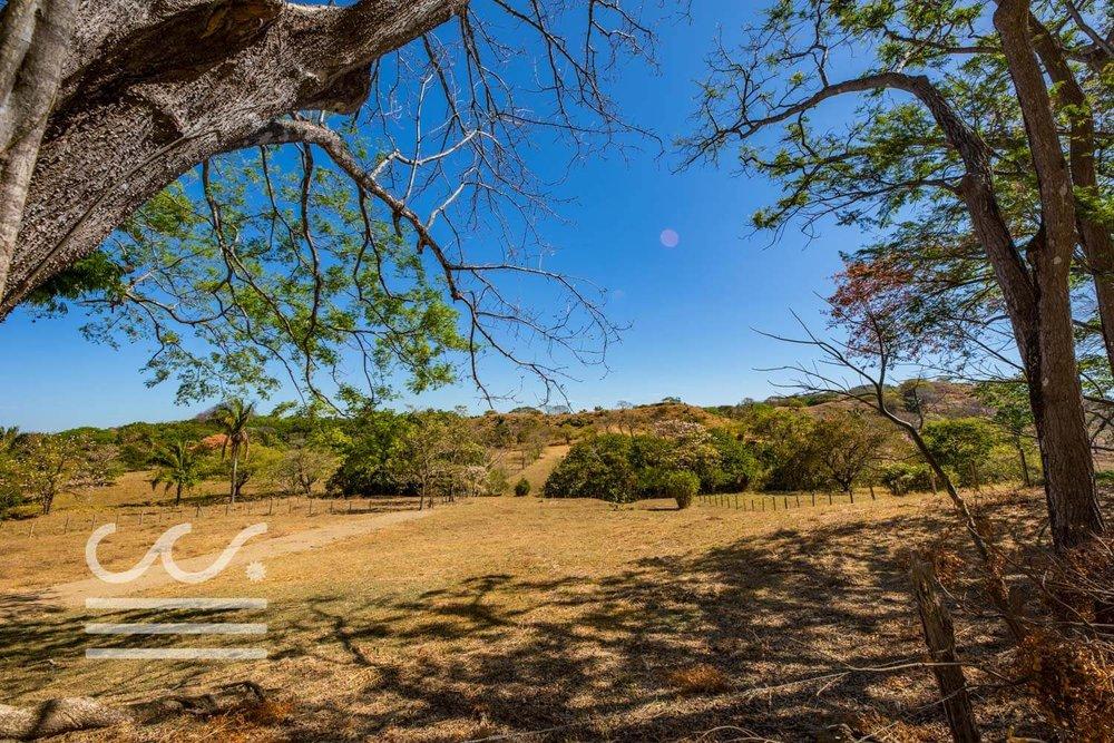 Dos-Playas-Lots-WM-Wanderlust-Real-Estate-Nosara-5compressed.jpg