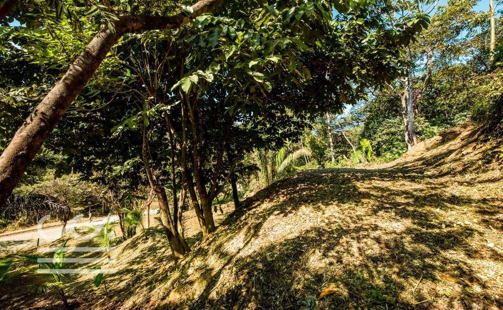 C-25-13-14-Wanderlust-Realty-Real-Estate-Rentals-Nosara-Costa-Rica-8.jpg