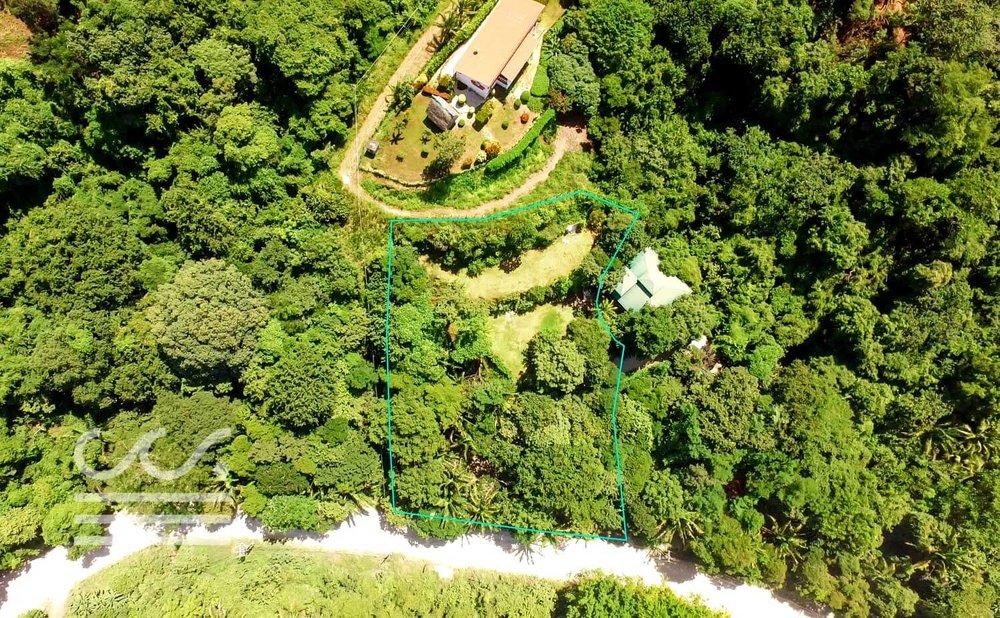 Mono-Congo-Ocean-Vlew-Lot-Wanderlust-Realty-Real-Estate-Rentals-Nosara-Costa-Rica-4.jpg