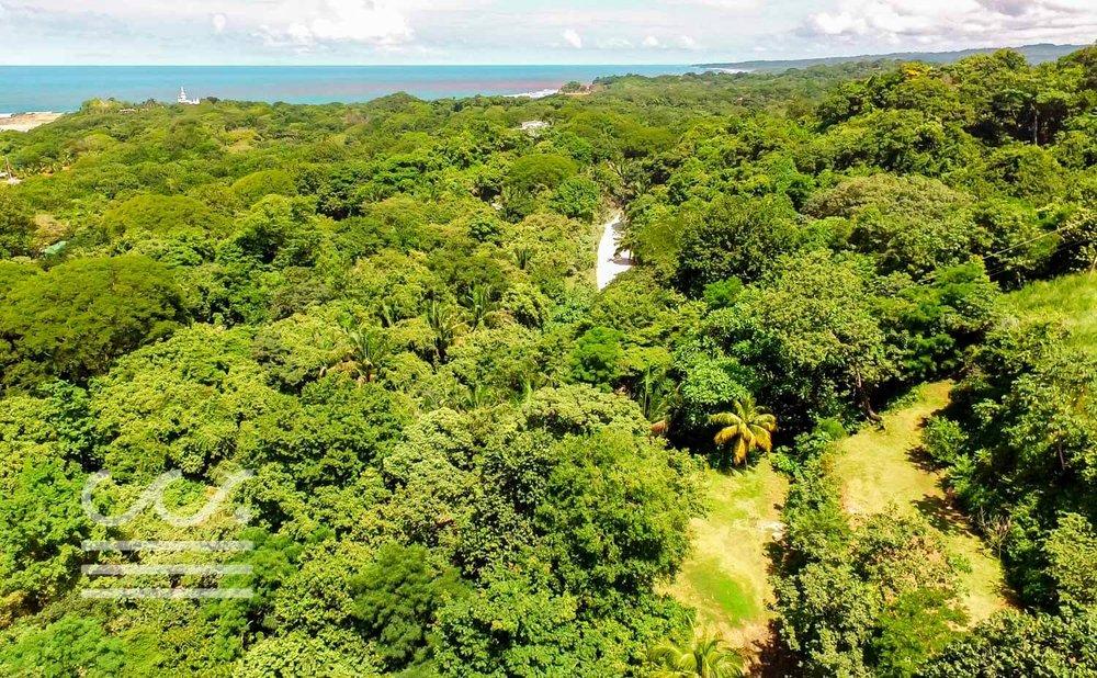 Mono-Congo-Ocean-Vlew-Lot-Wanderlust-Realty-Real-Estate-Rentals-Nosara-Costa-Rica-5.jpg