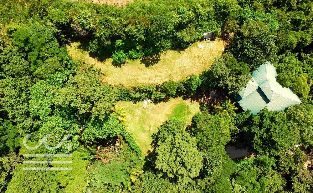 Mono-Congo-Ocean-Vlew-Lot-Wanderlust-Realty-Real-Estate-Rentals-Nosara-Costa-Rica-7.jpg