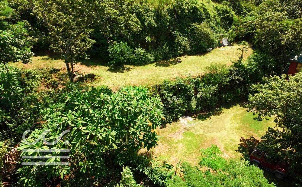 Mono-Congo-Ocean-Vlew-Lot-Wanderlust-Realty-Real-Estate-Rentals-Nosara-Costa-Rica-8.jpg