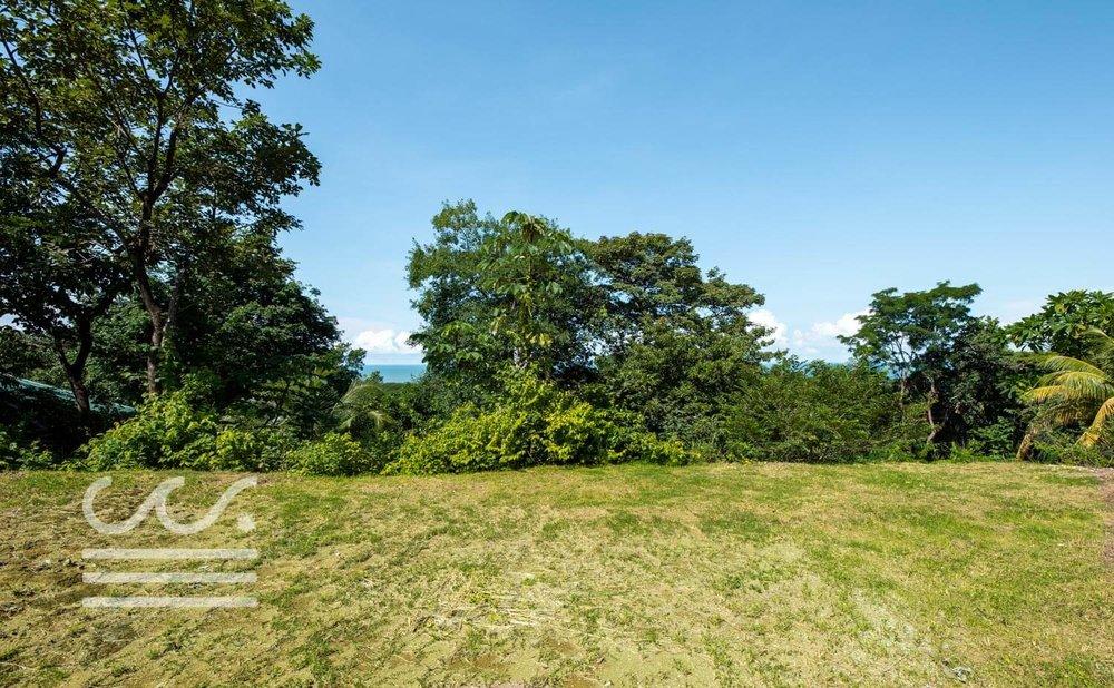Mono-Congo-Ocean-Vlew-Lot-Wanderlust-Realty-Real-Estate-Rentals-Nosara-Costa-Rica-10.jpg