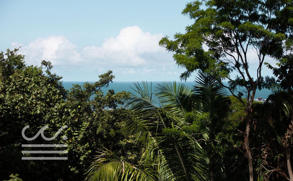 Mono-Congo-Ocean-Vlew-Lot-Wanderlust-Realty-Real-Estate-Rentals-Nosara-Costa-Rica-11.jpg