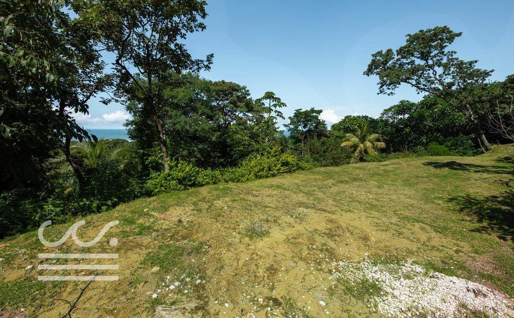 Mono-Congo-Ocean-Vlew-Lot-Wanderlust-Realty-Real-Estate-Rentals-Nosara-Costa-Rica-12.jpg