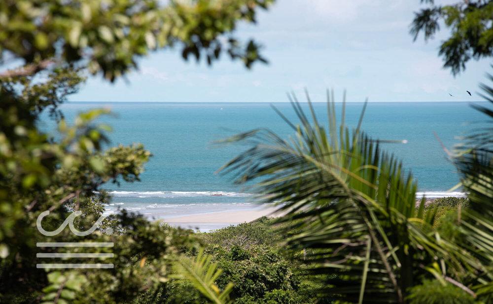 Mono-Congo-Ocean-Vlew-Lot-Wanderlust-Realty-Real-Estate-Rentals-Nosara-Costa-Rica-13.jpg