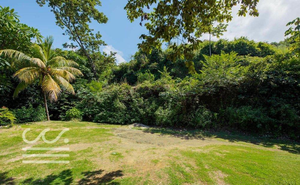 Mono-Congo-Ocean-Vlew-Lot-Wanderlust-Realty-Real-Estate-Rentals-Nosara-Costa-Rica-15.jpg