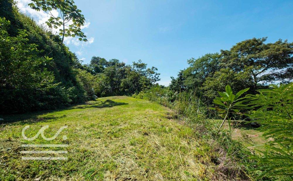 Mono-Congo-Ocean-Vlew-Lot-Wanderlust-Realty-Real-Estate-Rentals-Nosara-Costa-Rica-17.jpg