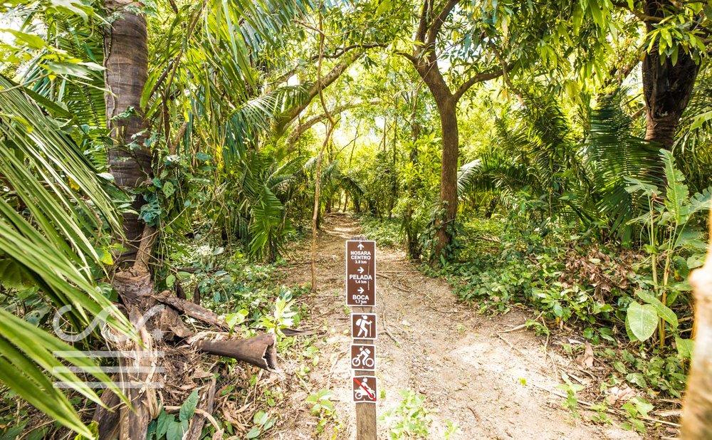 Nosara-Springs-4-Wanderlust-Realty-Real-Estate-Nosara-Costa-Rica-1.jpg