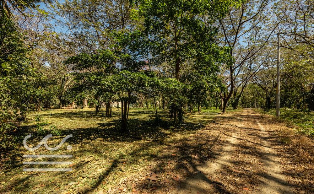 Nosara-Springs-25-Wanderlust-Realty-Real-Estate-Rentals-Nosara-Costa-Rica-3.jpg